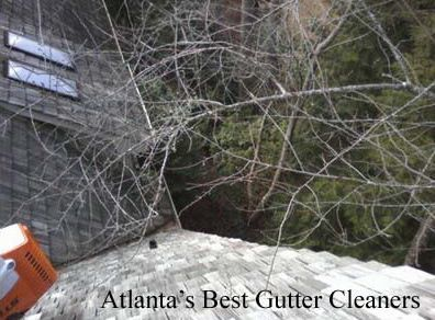 Acworth's Best Gutter Cleaners Before and After Tree Pruning