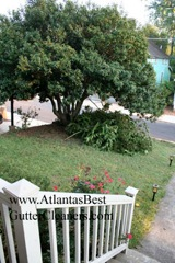 Acworth's Best Gutter Cleaners does tree pruning of limbs coming in range of the gutters.